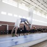 Gym Wizards Adult Gymnastics Classes