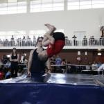 Holiday_Gymnastics_Clinics